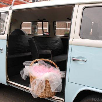 pastelblauwe Volkswagen bus